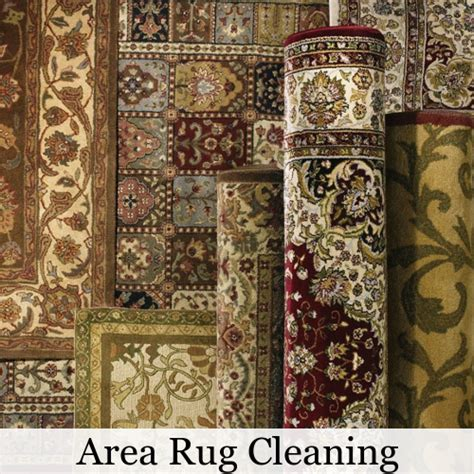 area rug cleaners professional area rug cleaning 30 free delivery