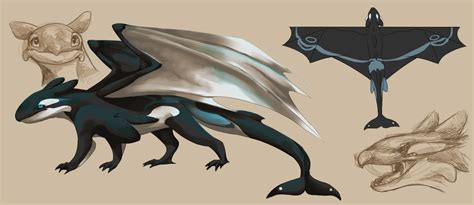 orca dragon concept by finchwing on deviantart