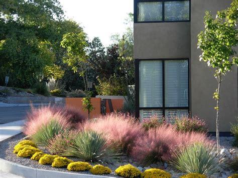 southwest backyard designs southwest garden design landscaping network