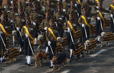 Indian Army canines march during Republic Day parade after ...