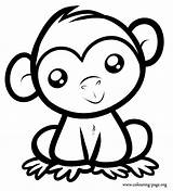 Monkey Coloring Colouring Monkeys Sitting Printable sketch template