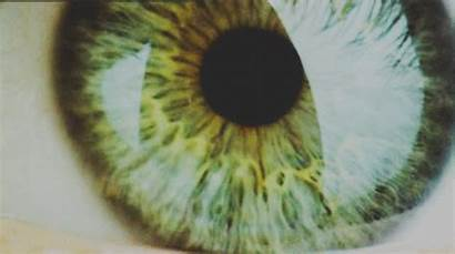 Eye Constricted Eyes Pupil Open Human