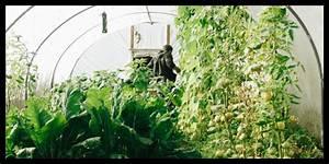 Gemüse Im Gewächshaus : gem se f r den weltall antarktis gew chshaus eden iss ~ Articles-book.com Haus und Dekorationen