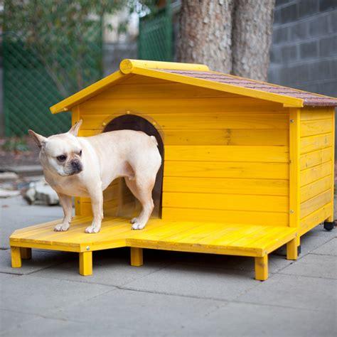 adorable dog houses       buy  adorable home