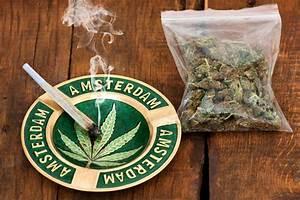 best cannabis in amsterdam