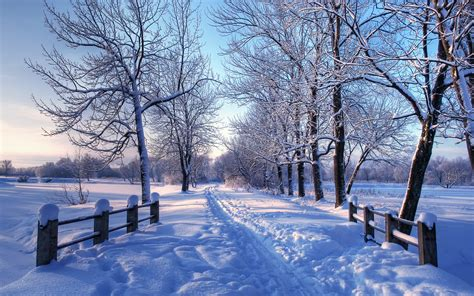 Free Winter Background by Winter Pictures For Desktop Background 69 Images