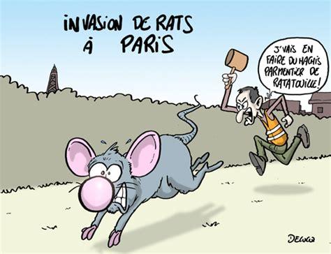 techno bureau de rats sur les pelouses du louvre à