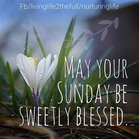 sweetly blessed sunday pictures   images