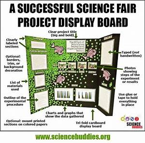 7 Best Science Fair Projects Images On Pinterest