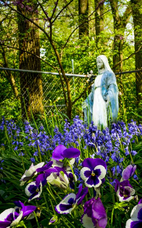 Mary Garden Winners for May - Catholic Telegraph