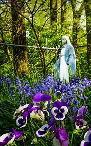 Mary, Garden, Winners, For, May, U2013, Catholic, Telegraph