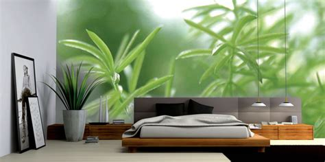 entretenir canapé en cuir poster mural déco informations de l 39 habitat