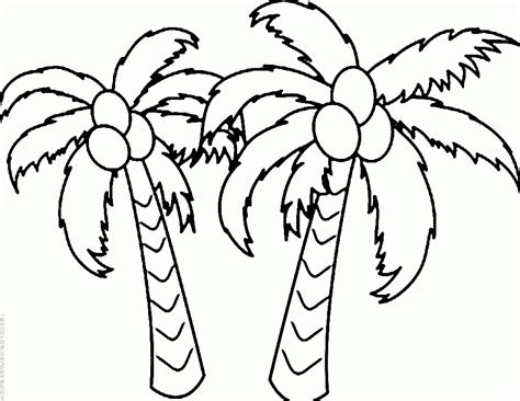 coconut tree  nature printable coloring pages
