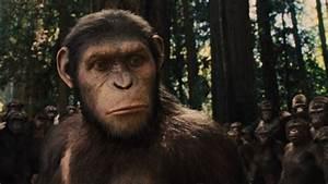 Caroline Aranha | Planet of the Apes Wiki | FANDOM powered ...