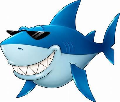 Shark Fish Cartoon Clipart Fin Transparent Clip