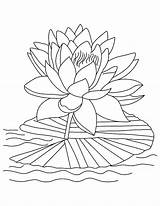 Coloring Lotus Pages Flower Tropical Leaves Bloom Drawing Reopen Printable Flowers Sheets Colouring Adult Easy Kidsplaycolor Lily Drawings Print Colors sketch template