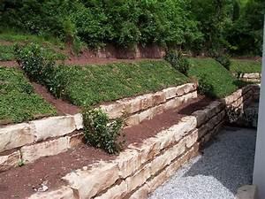 Hang Bepflanzen Bodendecker : bodendecker am laufenden meter erdhang pinterest ~ Lizthompson.info Haus und Dekorationen