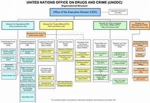 Organizational Structure Of Unodc