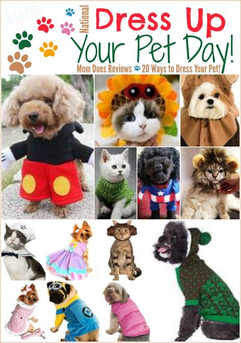 Happy National Dress Up Your Pet Day. Andersen 3000 Storm Door. Garage Door Bottom Seals. Banko Garage Doors Tampa. Door Entry Alert. Smooth Garage Floor. Open Garage Door With Smartphone. French Door Screen Doors. Screen Door