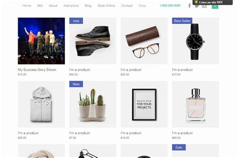 Wix Online Store Examples