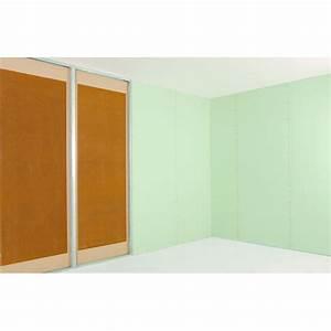 Plaque De Platre : plaque de pl tre parement acoustique placoplatre ba25 ~ Melissatoandfro.com Idées de Décoration
