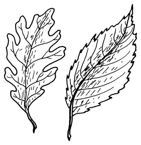 lihtleht vikipeedia vaba entsueklopeedia