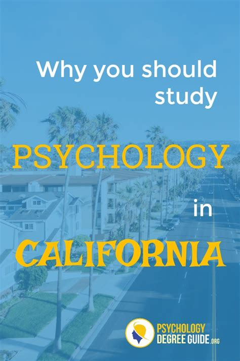 California Psychology Schools Psychology Degree Guide. Haskell Web Development Credit Cards Accepted. The Art Institute Of Houston Tuition. Mri Images Of Knee Injuries Deal Credit Card. Students Car Insurance Lpn Schools In Atlanta. The Importance Of Music Education. Boston University Civil Engineering. Effective Internet Marketing. What Is Personal Injury Law Detox In Chicago