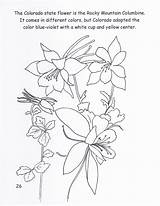 Columbine Colorado Coloring Flower State Mountain Rocky Drawings sketch template
