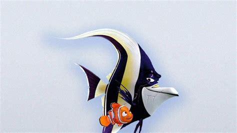 peces de buscando  nemo  fondos de pantalla