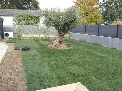 pelouse en rouleau les avantages nantes gazon