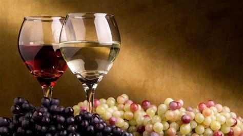 what is multi cuisine restaurant wine tasting andiamo