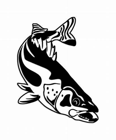 Walleye Fishing Sticker Stickers Fish Decals Stencil