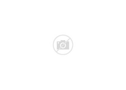 Rooftop Trane Precedent Commercial Units Roof Packaged