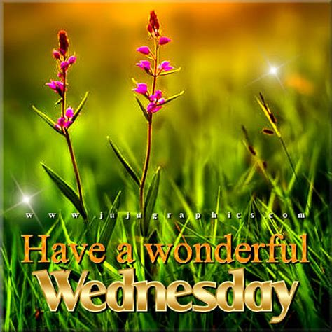 wonderful wednesday   graphics quotes