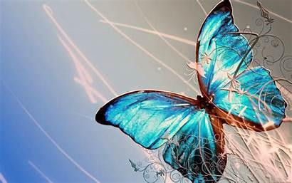 Kupu Gambar Kumpulan Dan Cantik Yang Indah