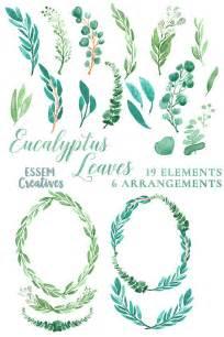 wedding invitations borders eucalyptus watercolor leaves clipart leaf wreath green