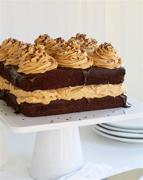 chocolate pumpkin cake pumpkin chocolate cake recipe dishmaps