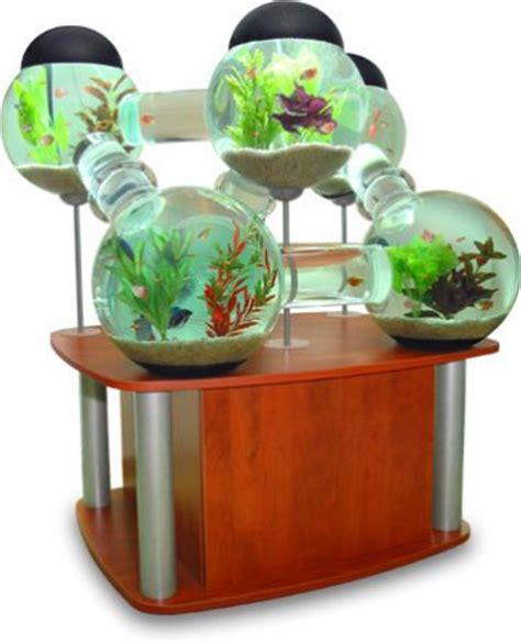 aquarium original pas cher des aquariums originaux blognature fr