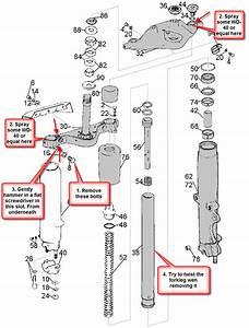 Parts Diagrams For Harley Davidson