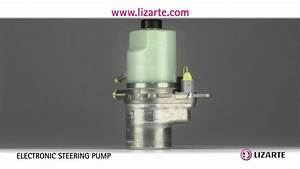 Electronic Power Steering Pump