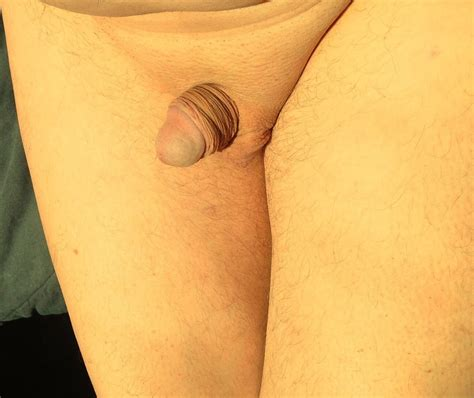 Sexair Small Cock Pin 37160189