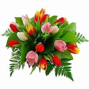 Bilder Von Blumenstrauß : blumenstrau tulpengru von bluvesa auf ~ Buech-reservation.com Haus und Dekorationen