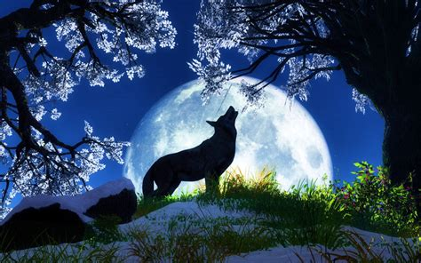 3d Animal Wallpapers Free - animal wallpapers 3d wallpapers