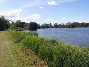 FishAdviser - Stillwater Lake, Westmill Farm, Ware, SG12 ...