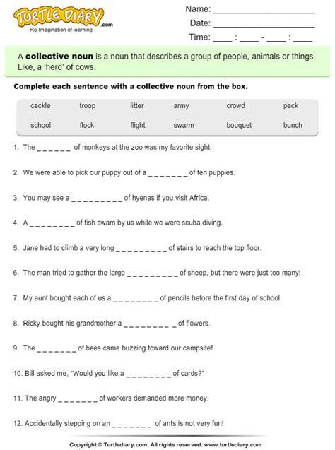 write  correct collective noun worksheet turtle diary