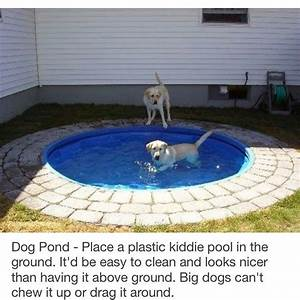 Hunde Pool Bauen : hunde pool selber bauen ralf hunde pool selber bauen anleitung bei hunde pool de pool ich liebe ~ Frokenaadalensverden.com Haus und Dekorationen