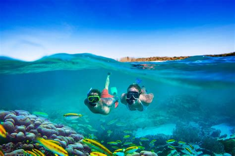 snorkeling tips for beginners from experienced guides