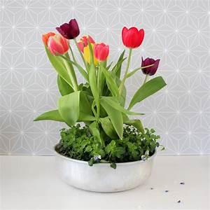 Dekorieren Im Frühling : dekorieren im fr hling tulpen und kuchenform ~ Markanthonyermac.com Haus und Dekorationen