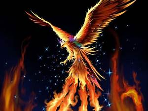 Fantasy Phoenix Wallpaper 8 Desktop Wallpaper ...