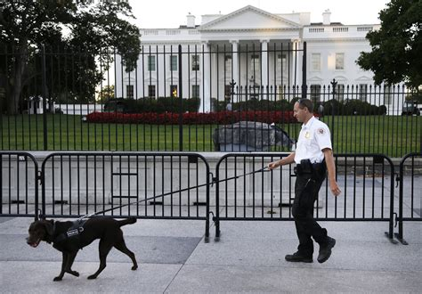 house security fence accused white house intruder armed in july arrest wavy tv